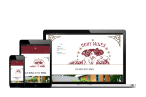home page Remy wines website