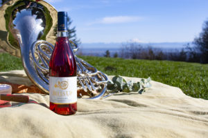 wine picnic with mountain background