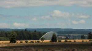 sprinkler in field